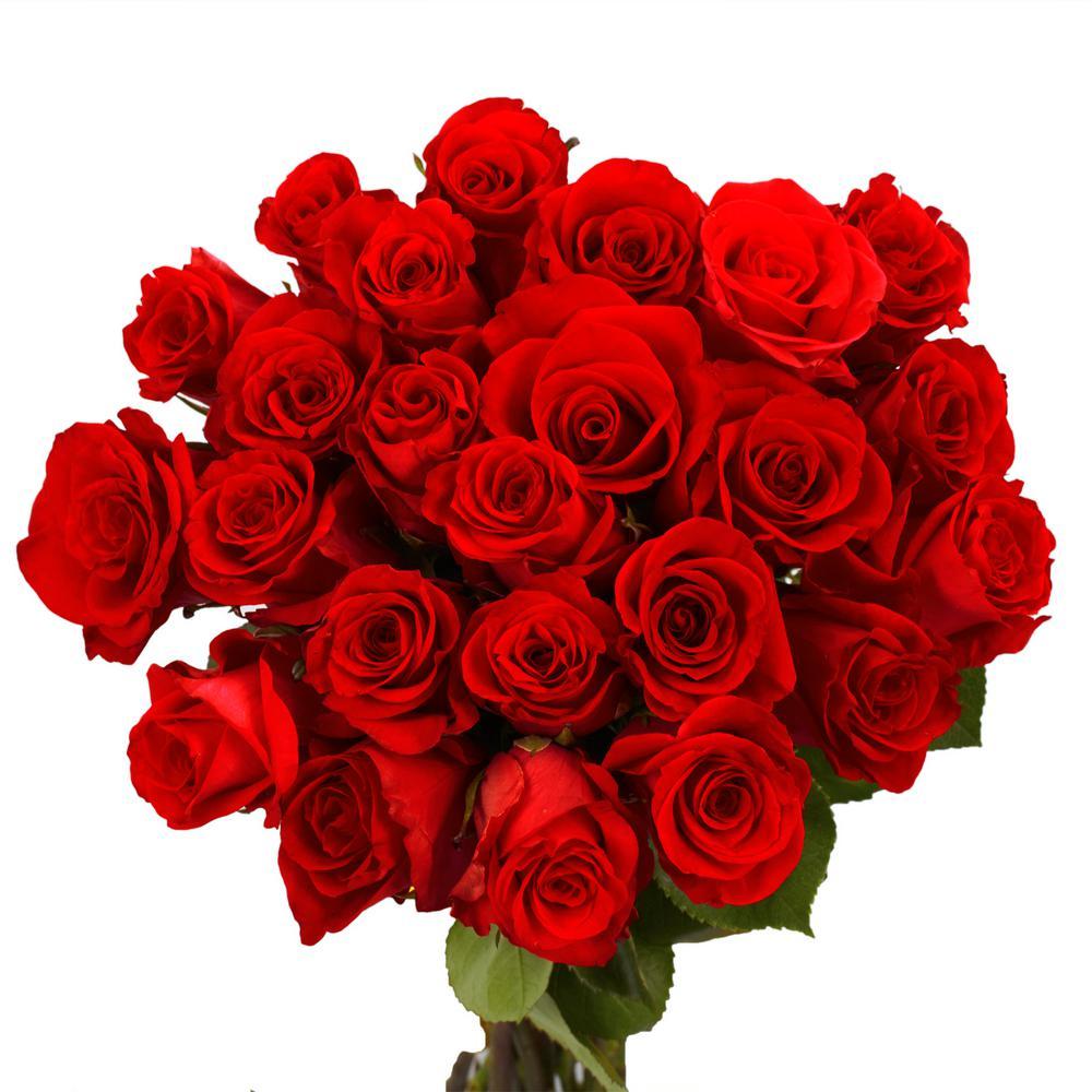 globalrose-flower-bouquets-50-red-roses-short-64_1000.jpg