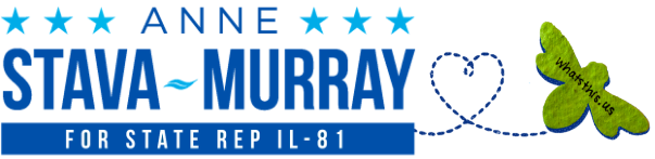 Anne Stava-Murray for State Rep IL-81