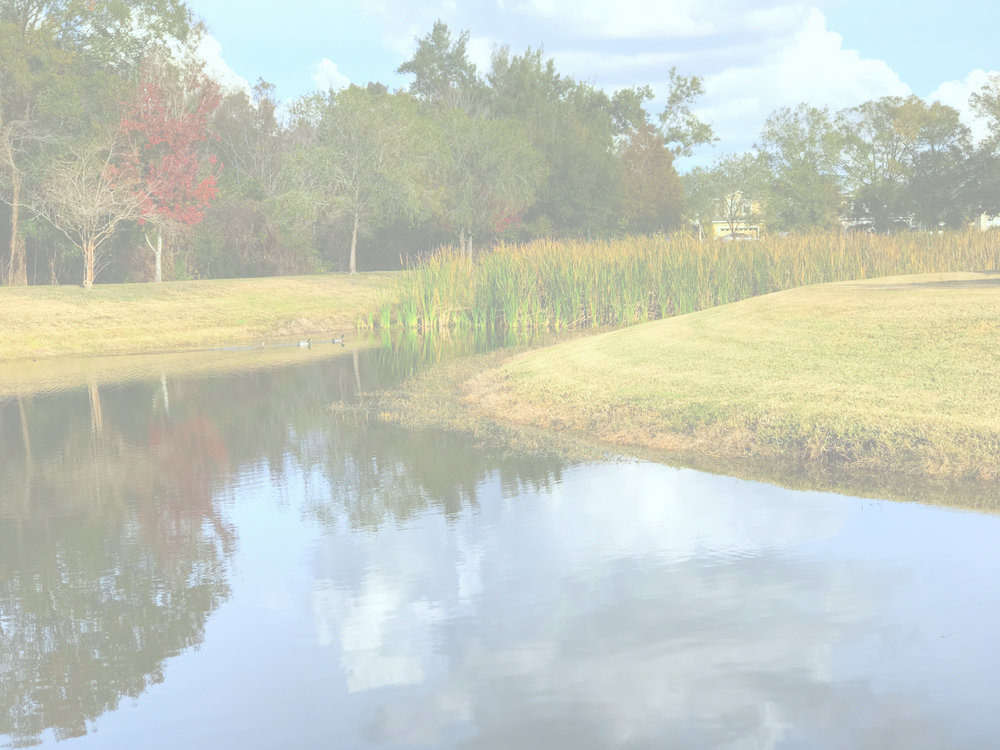 """- Let us handle the work of maintaining your the aquatic resources on your property. For 30 years, we've provided clients with the """"peace of mind"""" that comes with knowing that your lake or pond environment is being adequately maintained by a licensed professionals who seek to protect the aquatic assets on your property.Call us today. 813-654-1790"""