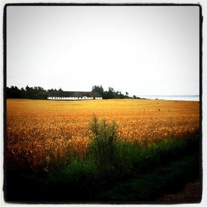 Een boerderij aan het water in Denemarken