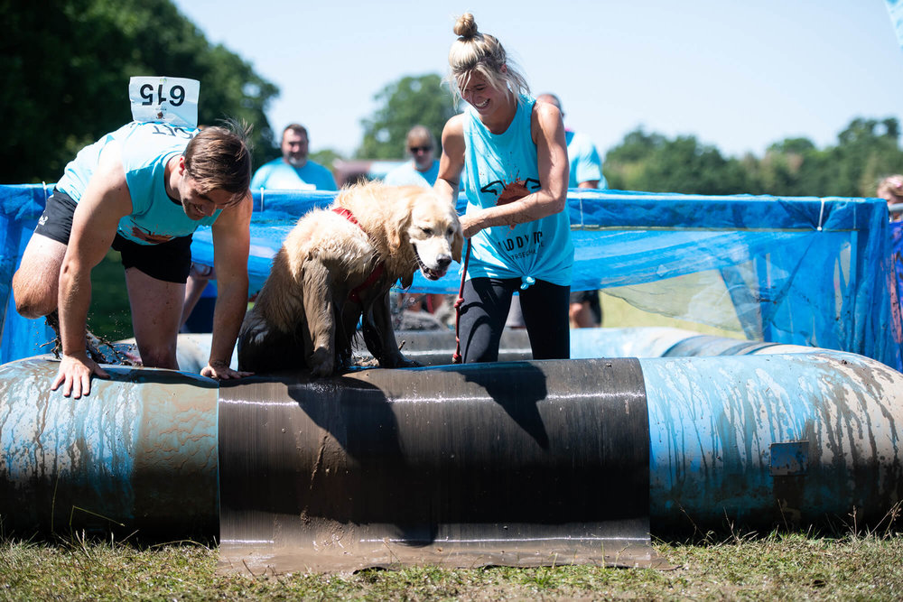 Muddy Dog Challenge Windsor 2018