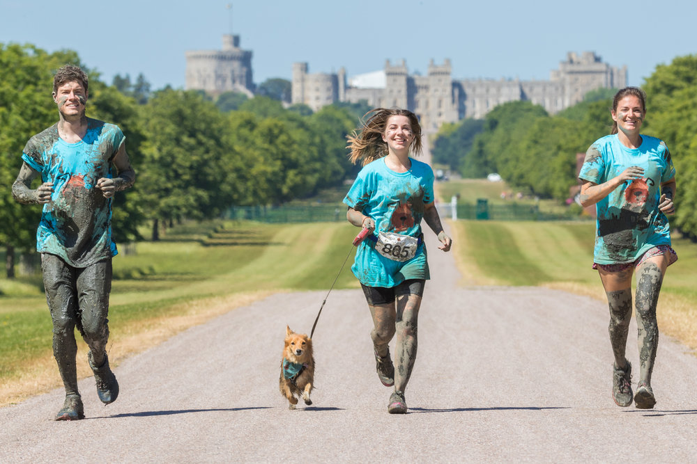 Battersea_30June_134 3 people running with small dog with house in background.jpg