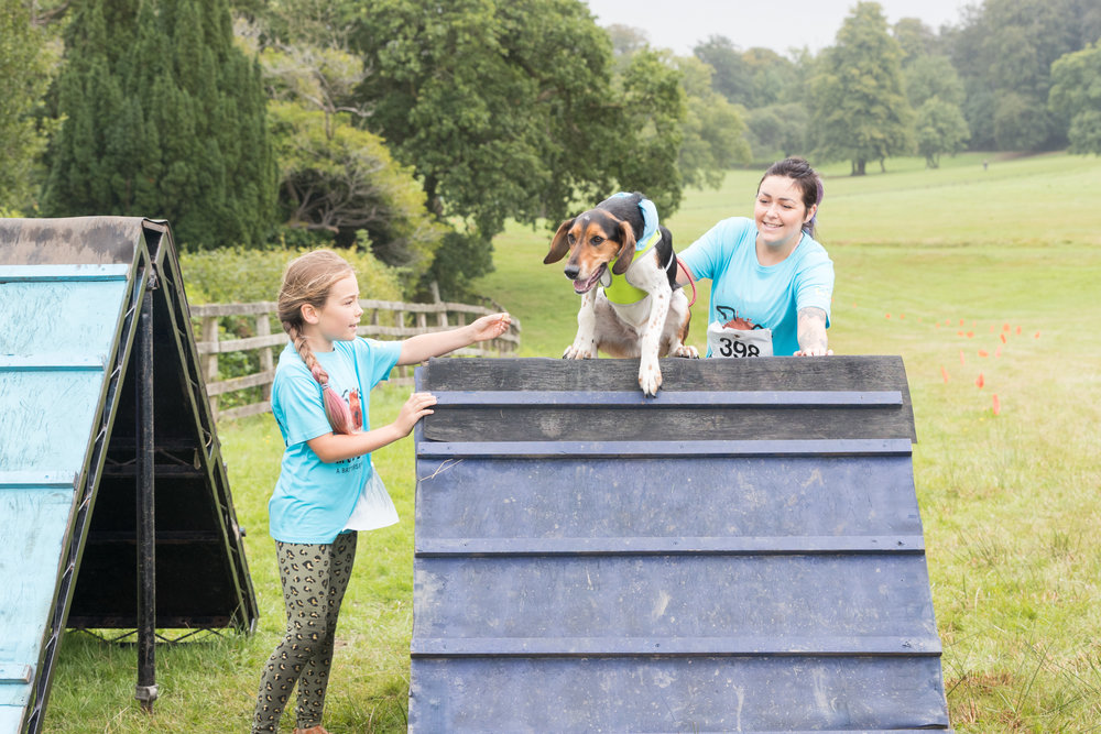 Cardiff kid helping dog on ballpit.jpg