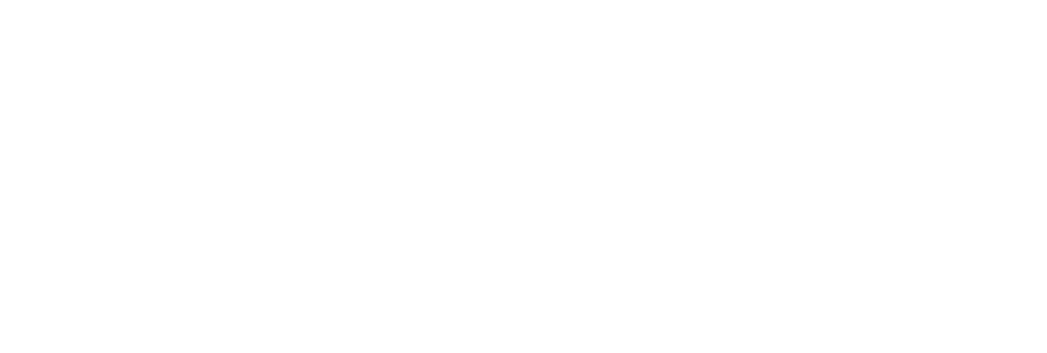 The Positive Business