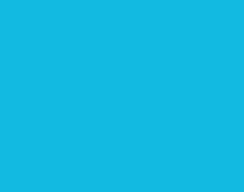 2018IBPC_logo.png
