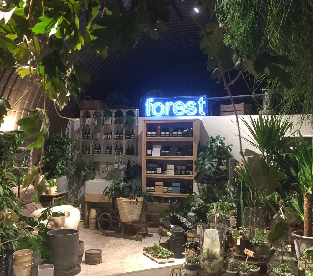 Forest neon in Deptford