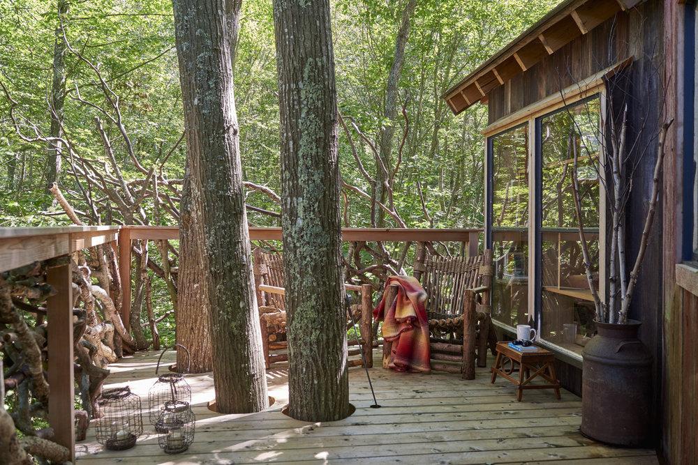 Davis.treehouse.9.8.1712246 1.jpg