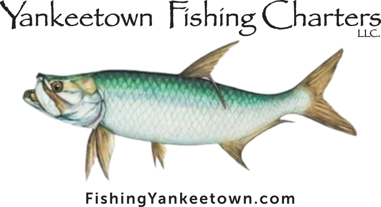 Yankeetown Fishing Charters, LLC.