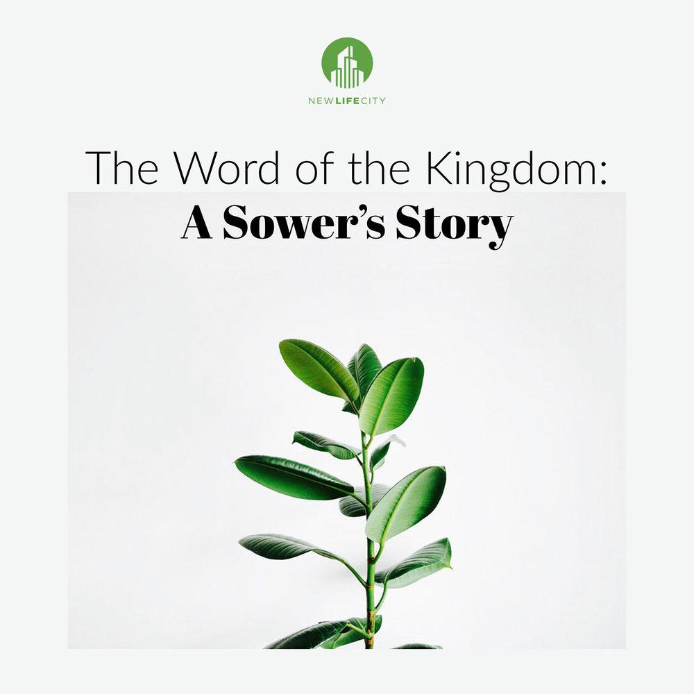 A Sower's Story.jpg