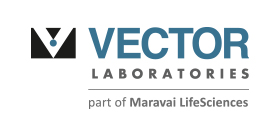 Vector_Logo_280x124pxl_96dpi.jpg