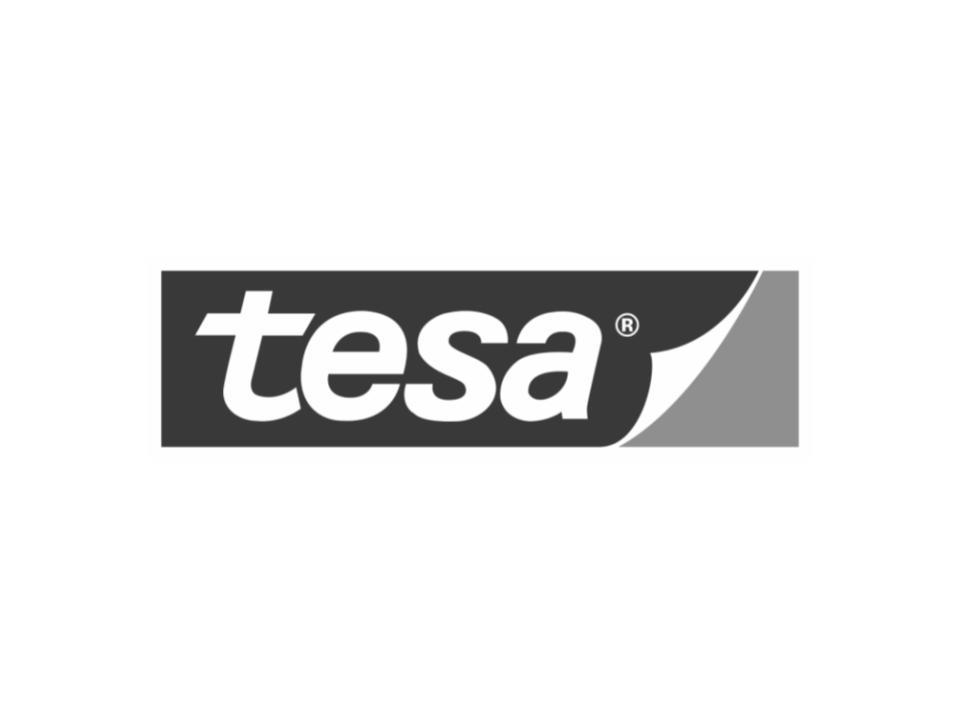 Tesa Logo SP.jpg