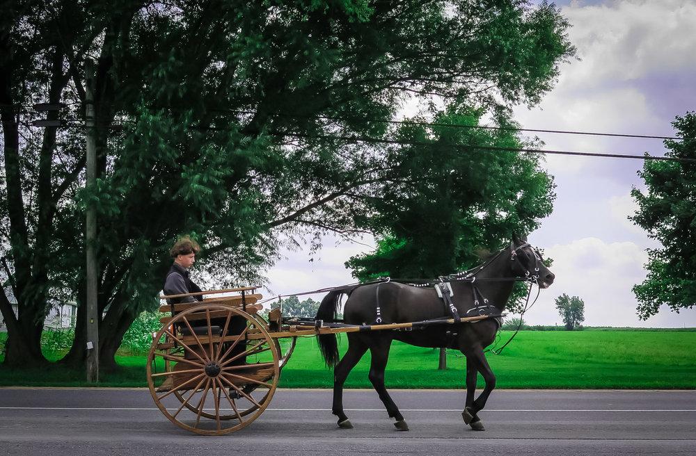 Amish-4.jpg