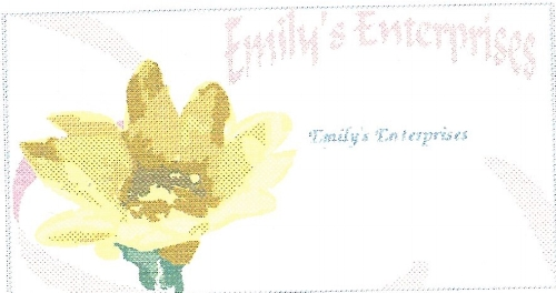 EmilysEnterprisesBusCardEdit.jpeg