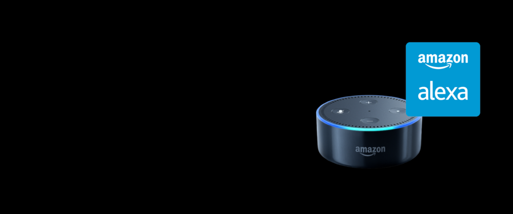Amazon Alexa Inforgraphic.png