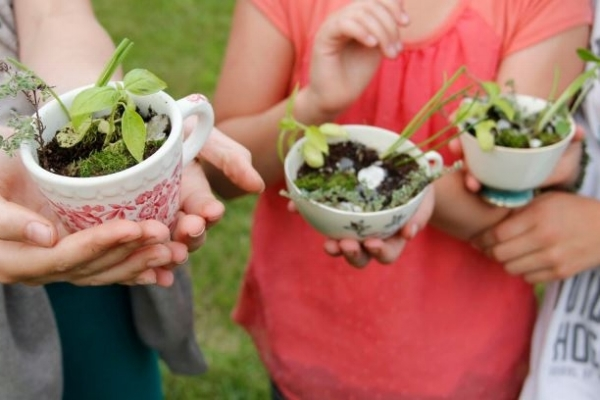 gardening-cups-2.jpg