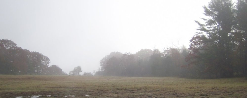 The DeWick Farm field in the early morning mist.
