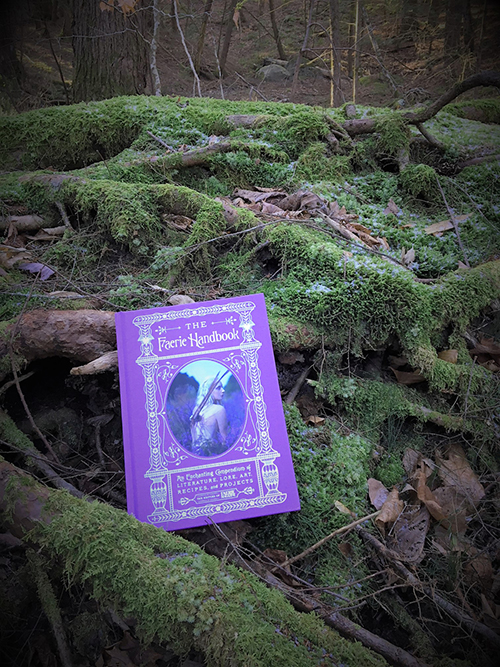 The Faerie Handbook in the wild.JPG