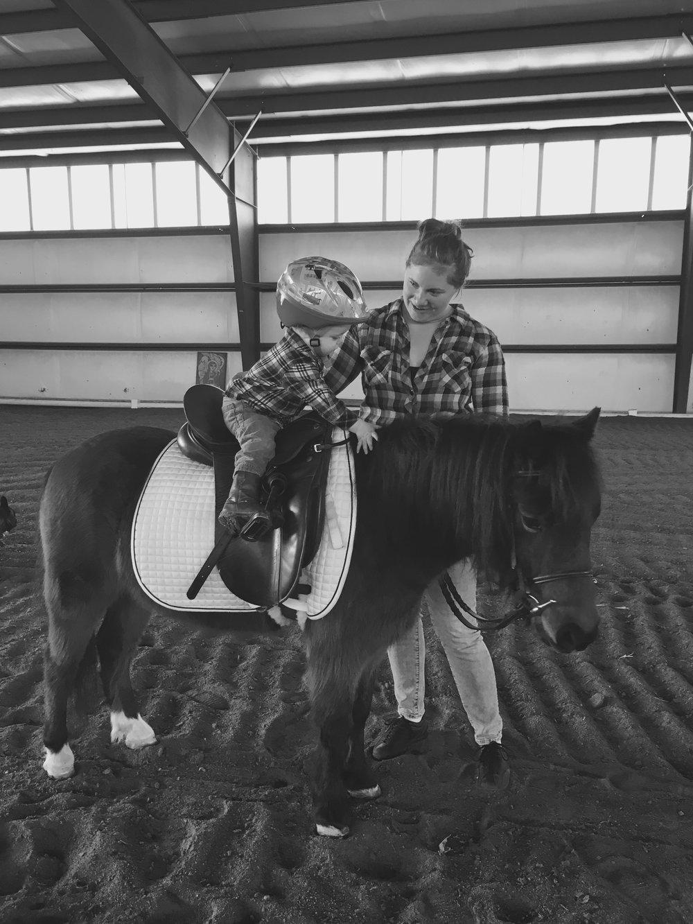 MAV PETTING HORSE.jpg
