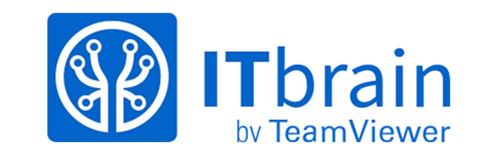 teamvierwer itbrain