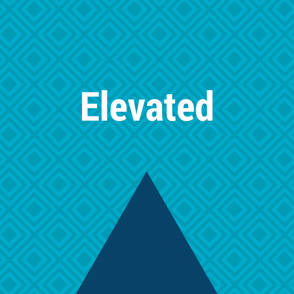 *Advertisement Payments are Made Directly from the Client to the Social Network. Elevate Marketing Co. is not responsible for advertising fees.