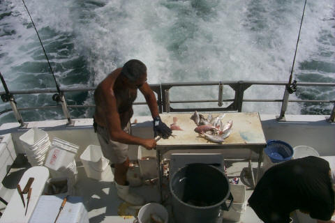Deep sea fishing is 3 miles away