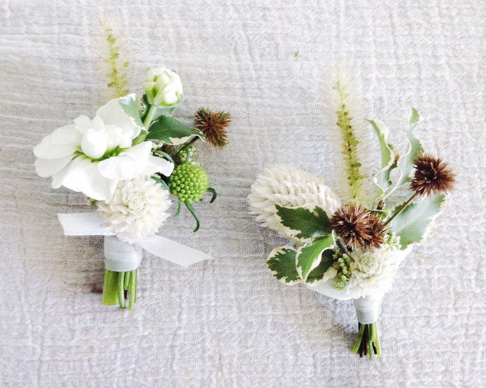 - BOUTONNIERE | seasonal textures/pods or blooms + greenery & ribbon - $25-35