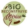 BioReconstruye Logo.jpg