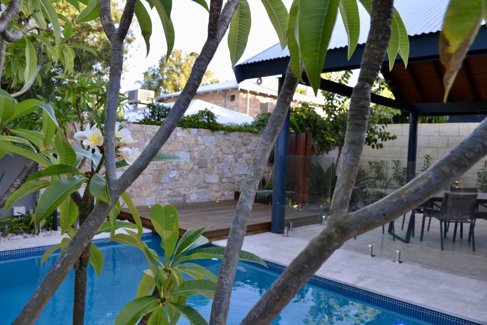 A view through the frangipani tree with the new swimming pool, sun lounge deck, stone feature wall and covered alfresco in the background.