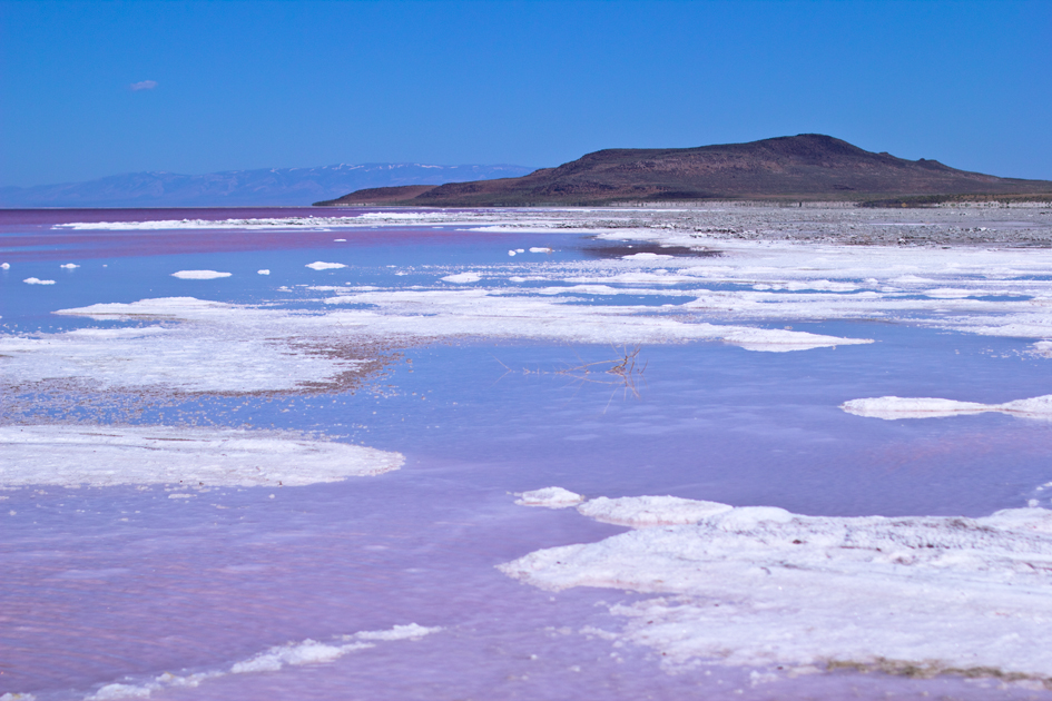 Photo Diary: Salt Lake City, Utah pink great salk lake utah