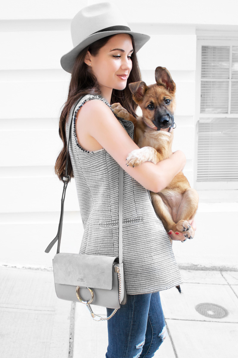 fashionable Girl with puppy Theory Eldora Patterned Suiting Vest Chloe Faye Shoulder Bag Boyfriend Jeans 1