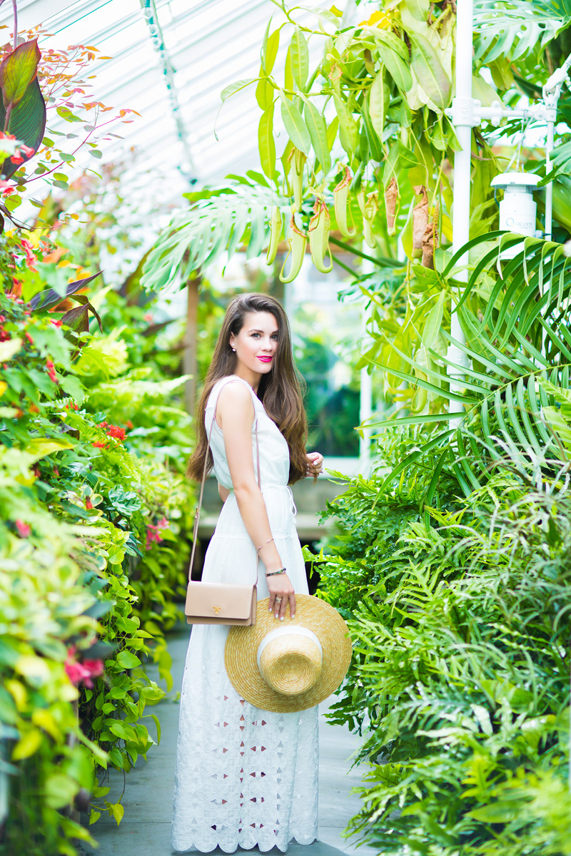 Twelfth Street by Cynthia Vincent Maxi V-neck Dress garden party outfit at Seattle Volunteer Park Conservatory is a botanical garden