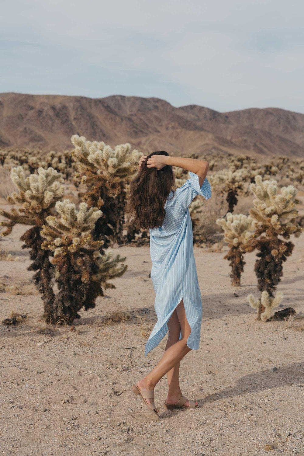 Frill Sleeve Maxi Shirt Dress Festival Outfit Coachella Joshua Tree Cholla Cactus Garden7.jpg