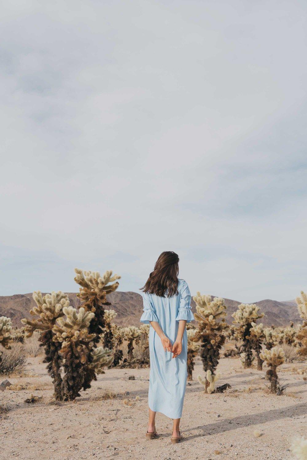 Frill Sleeve Maxi Shirt Dress Festival Outfit Coachella Joshua Tree Cholla Cactus Garden9.jpg