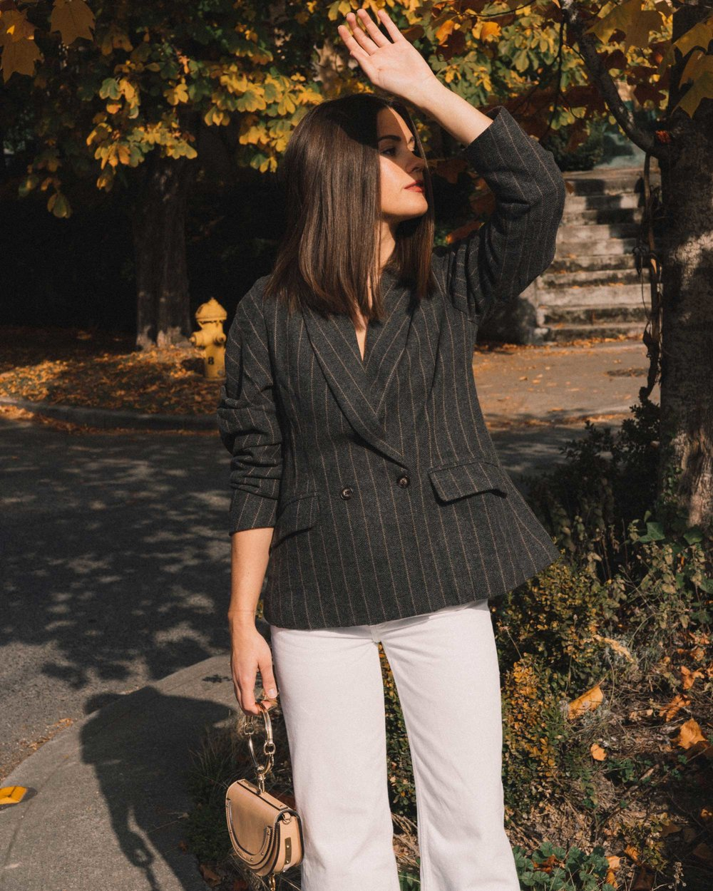 ASTR The Label Arden Charcoal Brown Stripe Gathered Puff Sleeve Blazer, winter white pants, cool fall outfit ideas,9.jpg