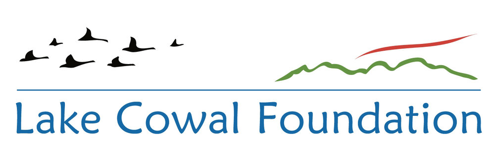 Lake Cowal logo.jpg