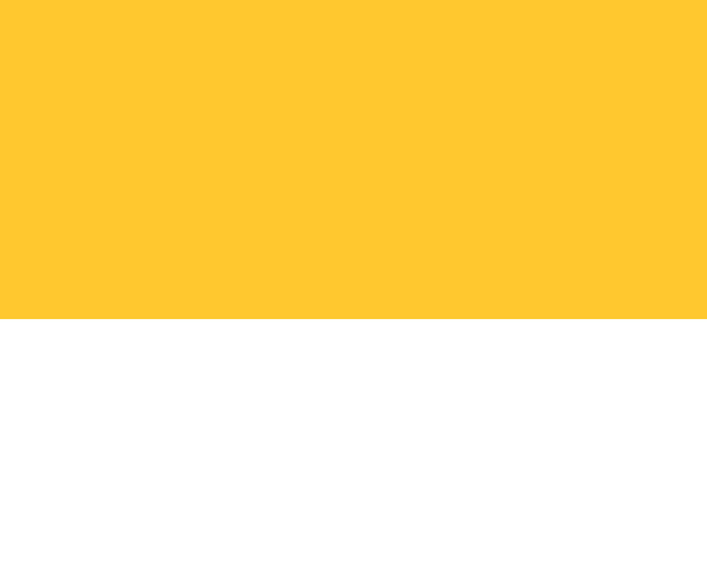 yellow banner 2.jpg