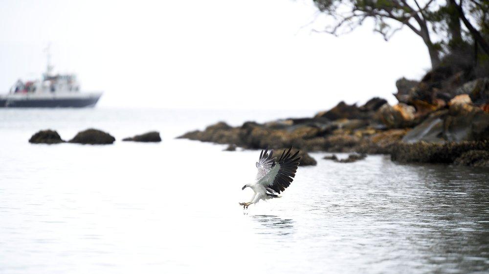 Fishing by Sar Nop