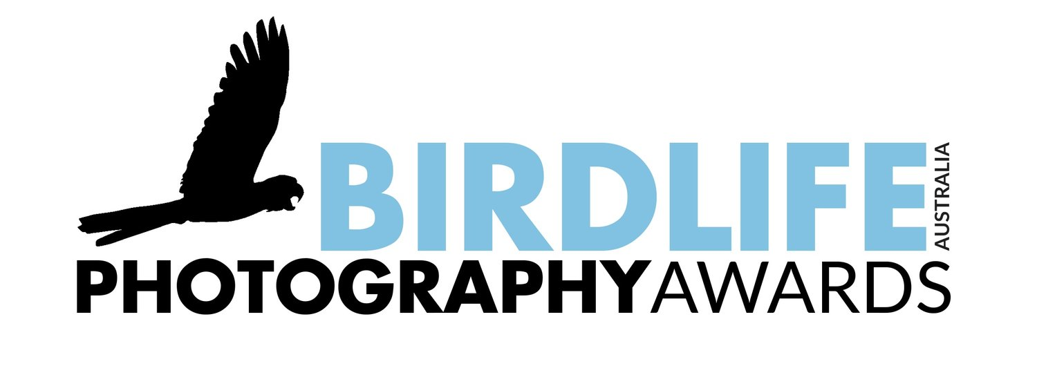 Australian BIRD PHOTOGRAPHER OF THE YEAR 2018