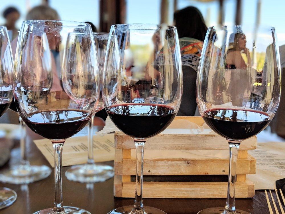 Ruca Malen Malbec Wines