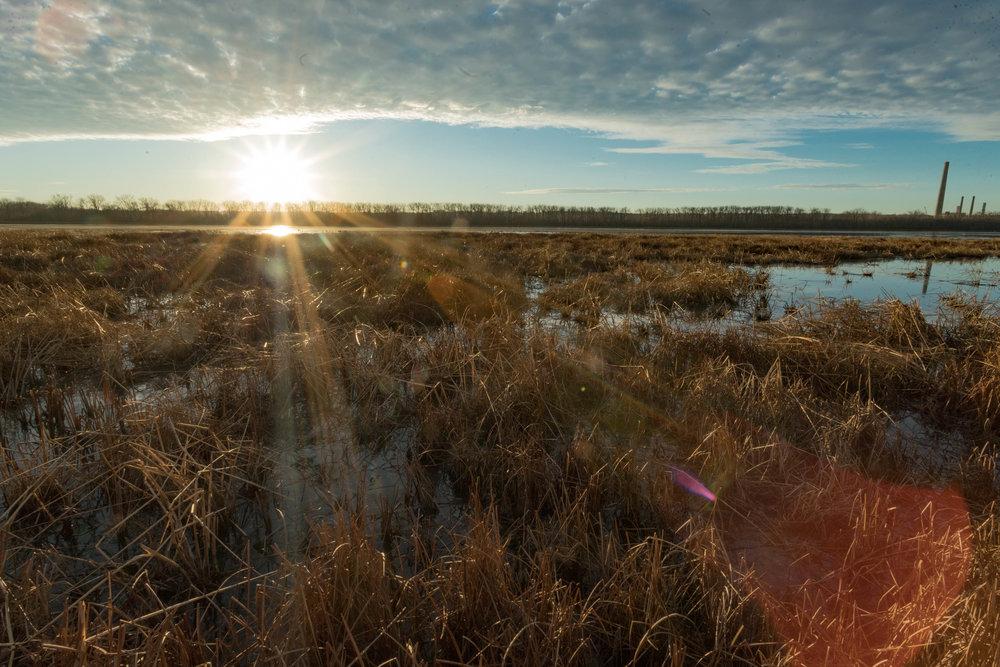 wetlands sunrise - minnesota river, bloomington