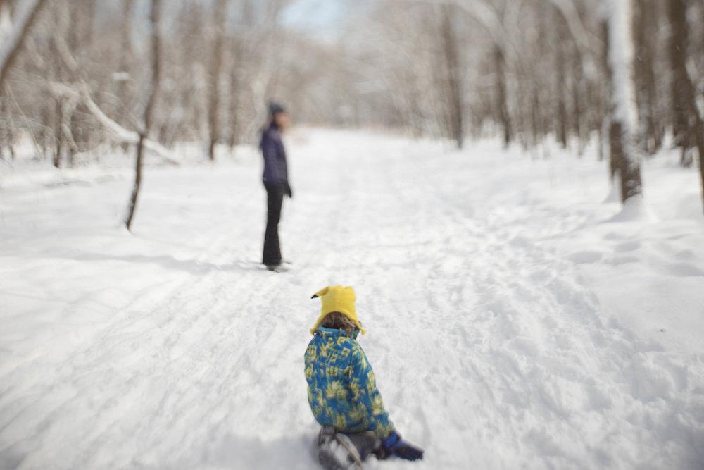 lincoln in the snow freelensed.jpg