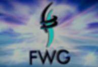 Forward Working Group (FWG)