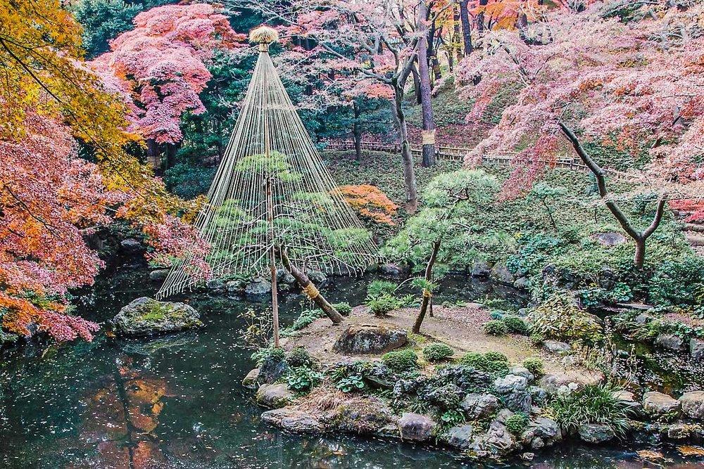 dmo-Tokyo-Finest-Japanese-gardens-00-Hero.jpg