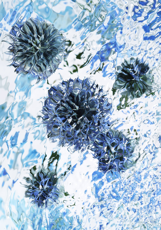 blue_web.jpg