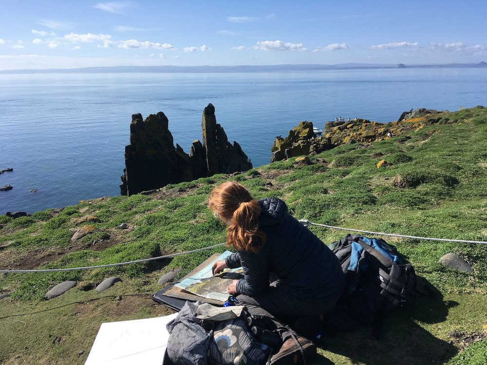 I was lucky enough to stay on the Isle of May (Firth of Forth) for a week in April 2018. See my recent blog to find out more.