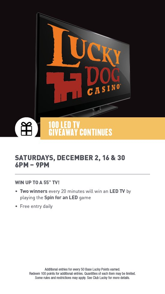 17-DOG-128 December Web Jpeg_P1-7 100 LED.jpg