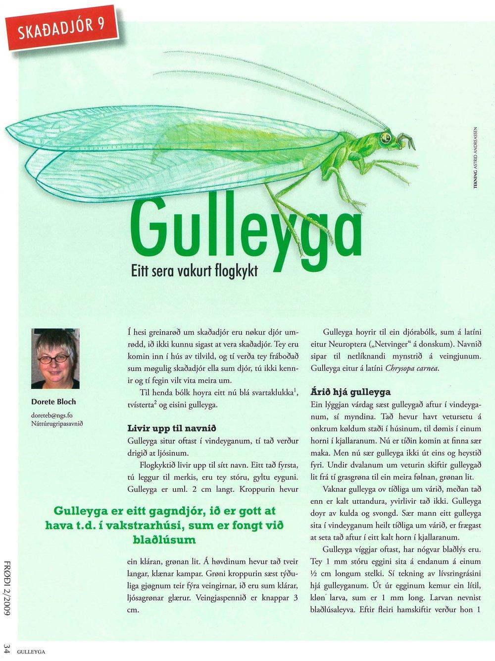 Gulleyga_Side_1.jpg