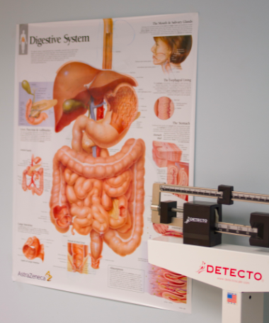 A body chart showing the digestive system as it relates to gastroenterology