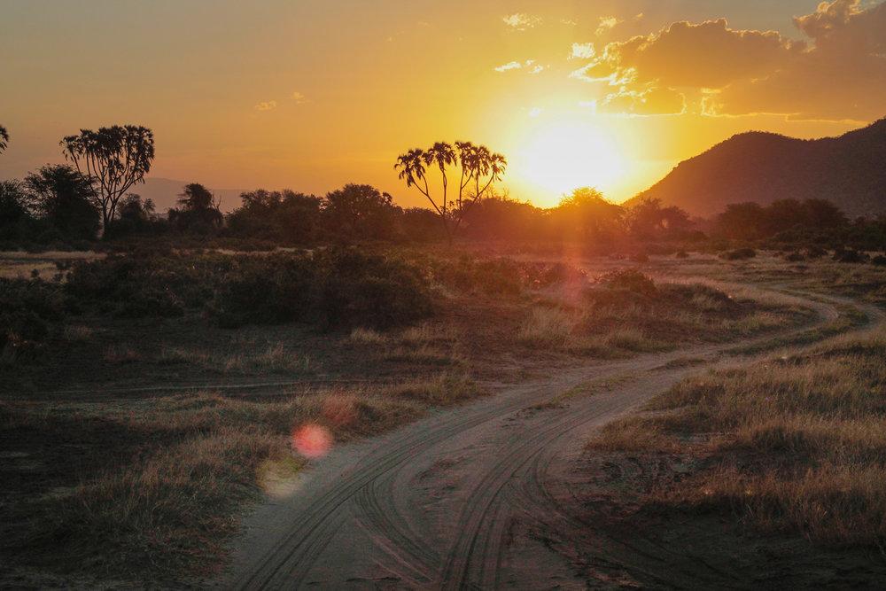 A classic Samburu sunset