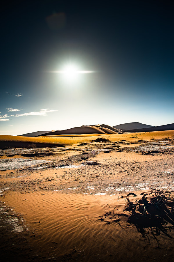 Sossusvlei: Sunrise on the Desert Plain